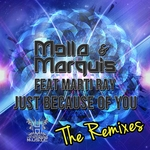 Just Because Of You (The remixes)