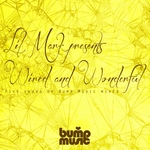 Lil' Mark Presents Wired & Wonderful 5 Years Of Bump Music