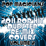 2011 Pop Hit Dubstep Re-Mix Covers Vol 2