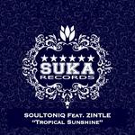 Tropical Sunshine (remixes)