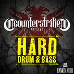 Hard Drum & Bass (Sample Pack WAV)