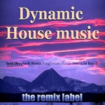 VARIOUS - Dynamic Housemusic (Best Deeptech Meets Proghouse Music Tunes In Key-D) (Front Cover)