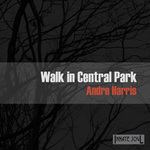 Walk In Central Park