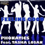 Feeling Good (Wmc 2013 Mixes)