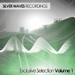 Silver Waves Exclusive Selection Volume One (unmixed tracks)