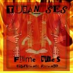 Flame Vibes (Experimental Flamenco)