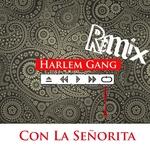 Con La Senorita (G-Pone & KFLO remix house edition)