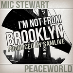 I'm Not From Brooklyn
