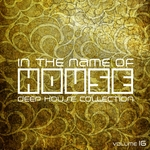 In The Name Of House Vol 16 (Deep House Collection)