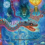 VARIOUS - Spirit Voices (Compiled by Gata Freak & Daksinamurti) (Front Cover)