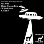 Close Encounters Of The Llama Kind