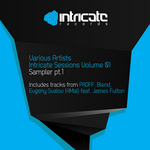 Intricate Sessions Volume 01 Sampler Part 1