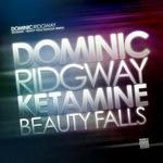 Ketamine/Beauty Falls (Dakosa Remix)