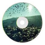 Bird Of Seed EP