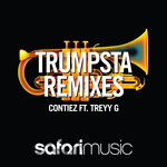 Trumpsta (remixes)