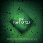 DIRRRTY B - Esprit Flashback Vol 5 (Front Cover)