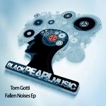 Fallen Noises EP