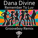 Remember To Luv (incl Grooveboy Remix)