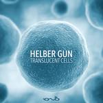 Translucent Cells