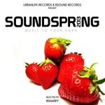 Sound Spring 2013: Music To Your Ears (Selected By Bsharry)