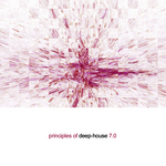 Principles Of Deep House 70