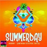 Summer Day (Anthem Festival 2013)