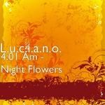 4:01AM Night Flowers