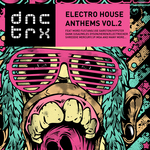 Electro House Anthems Vol 2
