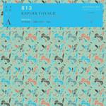 813 - Espoir Voyage (Front Cover)