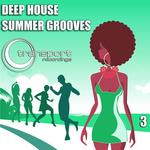 Deep House Summer Grooves