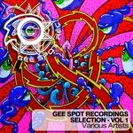 Gee Spot Recordings Selection Vol 1 (unmixed tracks)