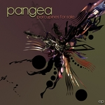 PANGEA - Porcupines For Sale (Front Cover)