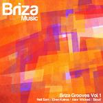 Briza Grooves Vol 1