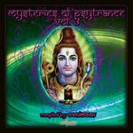 Mysteries Of Psytrance Volume 3 by Ovnimoon