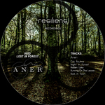 Lost In Forest EP