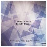 Book Of Dreams (remixes)