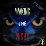 Waking The Night