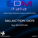 Edm Selection 009
