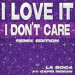 I Love It (I Don't Care Remix Edition)