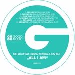 All I Am  (remixes)