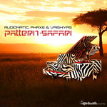 Pattern Safari