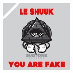 You Are Fake