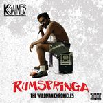 Rumspringa: The Wildman Chronicles