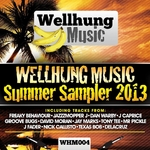 WellHung Music Summer Sampler