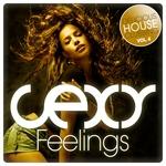 Sexy Feelings Delicious House Clubbing Vol 4