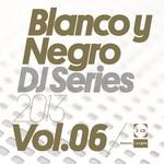 Blanco Y Negro DJ Series 2013 Vol 06