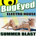 Electro House Summer Blast 2013