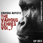 The Various Genres Vol 7 EP 2013