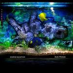 Analog Aquarium