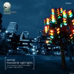 Novosibirsk Night Lights